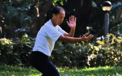 The Dance of Energy: Qigong and Tai Chi